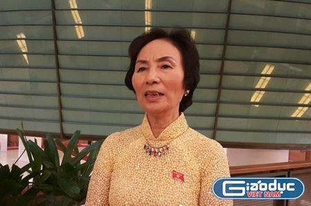 Ba Bui Thi An: 'Can minh bach de khong lang phi mo hoi, cong suc cua dan' - Anh 2
