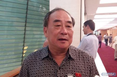 Ba Bui Thi An: 'Can minh bach de khong lang phi mo hoi, cong suc cua dan' - Anh 3