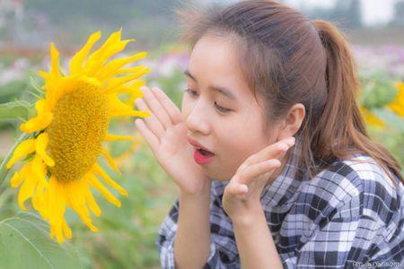 Lac buoc toi 'thien duong hoa Quang La' moi toanh o Quang Ninh - Anh 5