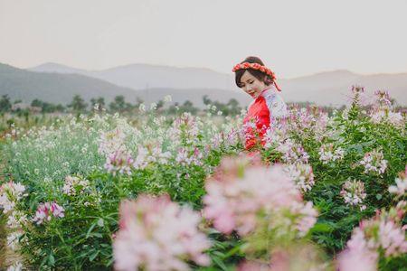 Lac buoc toi 'thien duong hoa Quang La' moi toanh o Quang Ninh - Anh 7