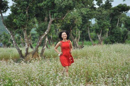 Lac buoc toi 'thien duong hoa Quang La' moi toanh o Quang Ninh - Anh 9
