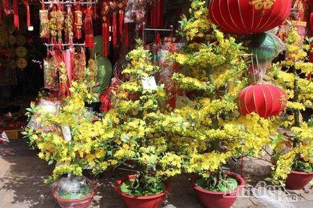 Ngay 22 thang Chap: Nguoi Sai Gon ron rang mua sam Tet tai cho tai loc Hai Thuong Lan Ong - Anh 7