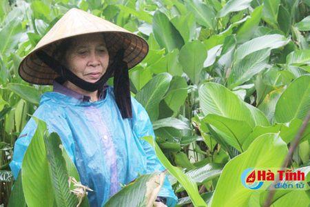 Lang la dong Vinh Phuc tat bat phuc vu Tet - Anh 3