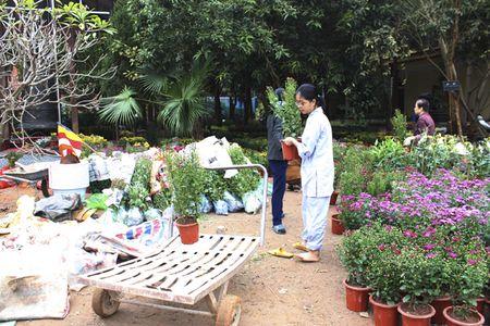 Ha Noi: Doc dao le hoi hoa xuan dau tien duoc to chuc tai cua Phat - Anh 2