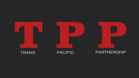 Canada khang dinh se tham gia dam phan hau TPP tai Chile - Anh 1