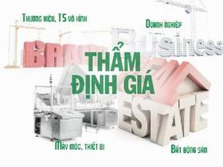 Chan chinh hoat dong tham dinh gia - Anh 1