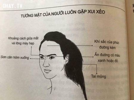 10 kieu phu nu dan ong khong nen lay lam vo - Anh 8