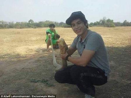 Tay khong bat ran ho mang vua khong lo dai 4m o Thai Lan - Anh 1