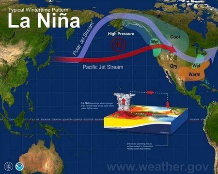 He lo su that kinh hoang ve hien tuong El Nino - Anh 1