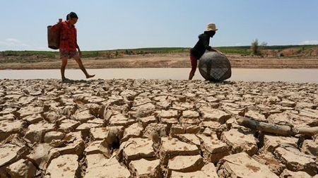 He lo su that kinh hoang ve hien tuong El Nino - Anh 4