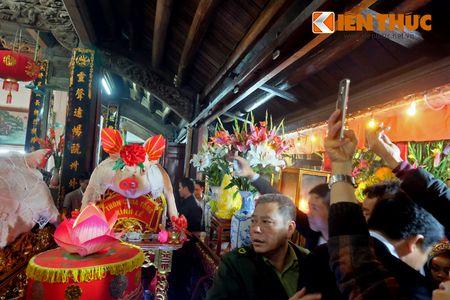 An tuong le ruoc 17 'ong Lon' nang 300kg o Ha Noi - Anh 14