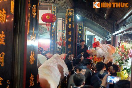 An tuong le ruoc 17 'ong Lon' nang 300kg o Ha Noi - Anh 4
