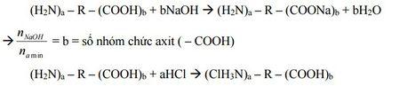 Kinh nghiem giai cac bai toan ve Amin - Aminoaxit (Hoa hoc 12) - Anh 11