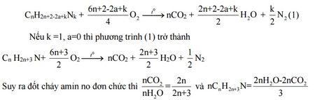Kinh nghiem giai cac bai toan ve Amin - Aminoaxit (Hoa hoc 12) - Anh 5