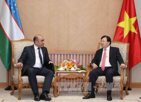 Pho Thu tuong Trinh Dinh Dung tiep Pho Thu tuong Uzbekistan Mirzaev Zoiyr - Anh 1