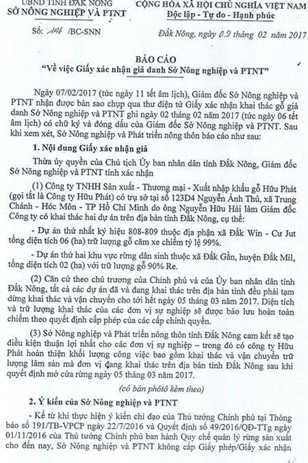 Doanh nghiep gia mao chu ky va con dau cua Giam doc So de khai thac go - Anh 1
