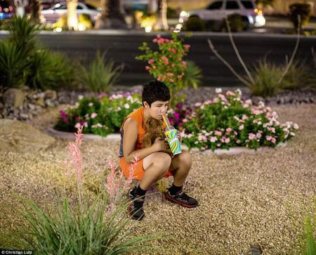 Goc toi duoi anh den hoa le cua Las Vegas - Anh 7
