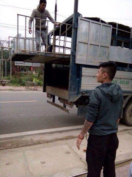Chu tich tinh Ha Giang yeu cau lam ro vu chu trang trai cho con do cuop lon, ep ky no - Anh 2