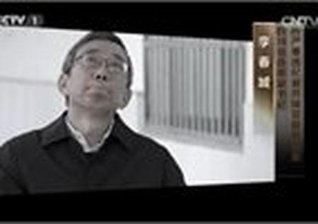 Ty phu TQ bi bat, lo nhung manh moi chan dong - Anh 10