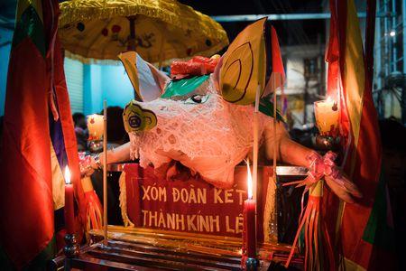 Nguoi dan La Phu tung bung ruoc 'Ong lon' 200kg trong dem - Anh 12