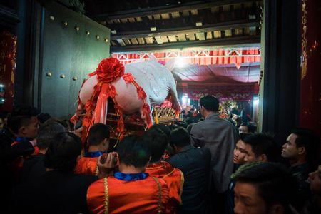 Nguoi dan La Phu tung bung ruoc 'Ong lon' 200kg trong dem - Anh 17