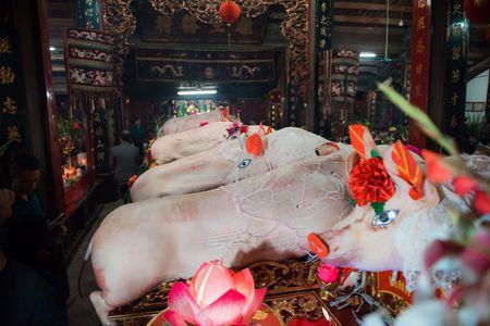 Nguoi dan La Phu tung bung ruoc 'Ong lon' 200kg trong dem - Anh 19