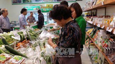 """Ha Noi trien khai """"Ngay Quyen cua Nguoi tieu dung Viet Nam"""" - Anh 1"""