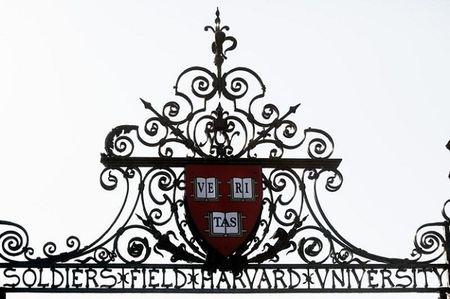 22 dieu chi sinh vien Harvard moi thau hieu - Anh 6