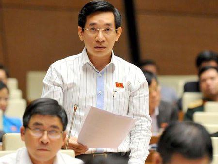 Vi sao ong Nguyen Van Canh xin thoi dai bieu Quoc hoi chuyen trach? - Anh 1