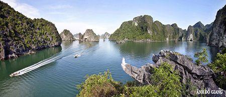 Cac ngoi sao cua phim 'Kong: Skull Island' noi gi ve Vinh Ha Long? - Anh 4