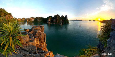 Cac ngoi sao cua phim 'Kong: Skull Island' noi gi ve Vinh Ha Long? - Anh 5