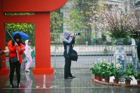 Nguoi dan doi mua di xem Le hoi hoa anh dao Nhat Ban - Anh 10