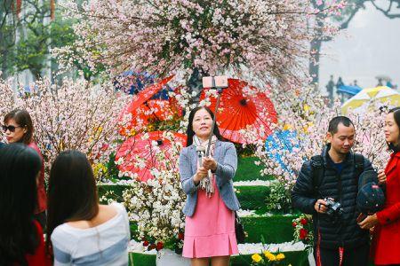 Nguoi dan doi mua di xem Le hoi hoa anh dao Nhat Ban - Anh 4