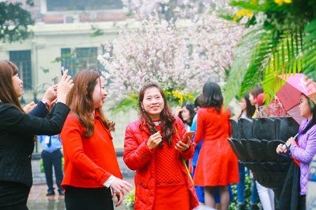 Nguoi dan doi mua di xem Le hoi hoa anh dao Nhat Ban - Anh 6