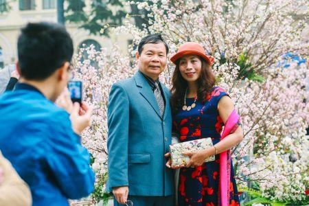 Nguoi dan doi mua di xem Le hoi hoa anh dao Nhat Ban - Anh 8