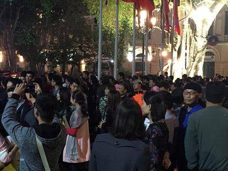 Le hoi Hoa anh dao 2017: Ngam hoa tu xa trong dem khai mac - Anh 3