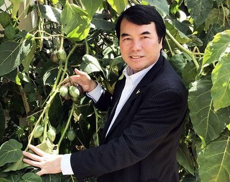 Lam Dong: Trong thanh cong sieu qua Magic-S 1 trieu dong/kg - Anh 3