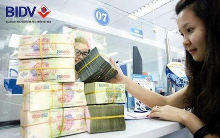10.000 ty dong cho vay san xuat nong nghiep voi lai suat hap dan - Anh 2