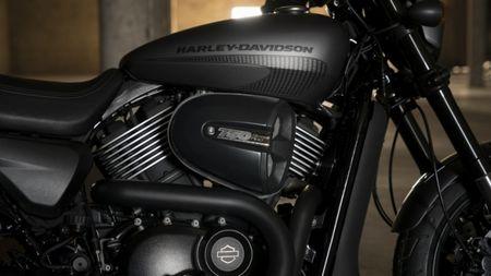 Harley-Davidson gioi thieu chiec Street Rod 750 tai Hoa Ky - Anh 9