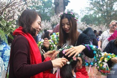 100% hoa 'xin' tai Le hoi hoa anh dao khong lam du khach that vong - Anh 11