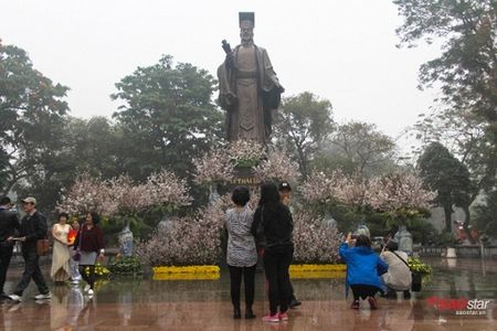 100% hoa 'xin' tai Le hoi hoa anh dao khong lam du khach that vong - Anh 3