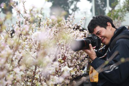 Chen chan ngam hoa anh dao duoi troi mua phun - Anh 10