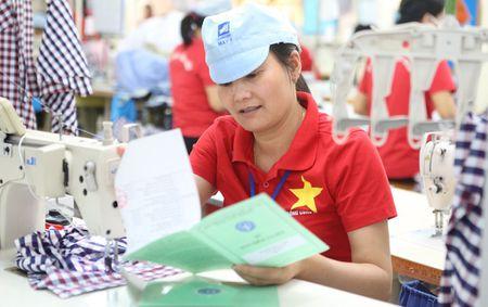 Khong cho BHXH Viet Nam tang them hang ngan bien che - Anh 1