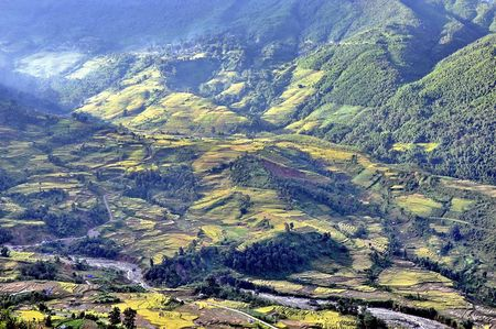 Ngam 'buc tranh' day mau sac o Ngai Thau - Anh 13
