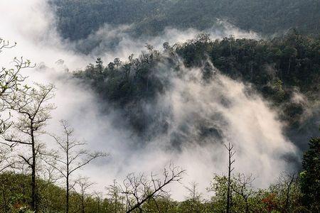 Ngam 'buc tranh' day mau sac o Ngai Thau - Anh 7