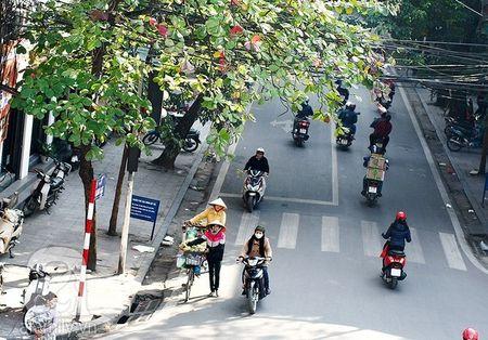 Thoi tiet hom nay 11/3: Hung nang - Anh 1