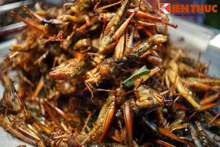 Chet khiep voi the gioi am thuc con trung o Thai Lan - Anh 14