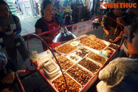 Chet khiep voi the gioi am thuc con trung o Thai Lan - Anh 1