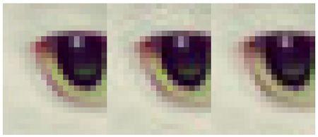 Google ma hoa file JPEG tiet kiem 35% dung luong - Anh 2