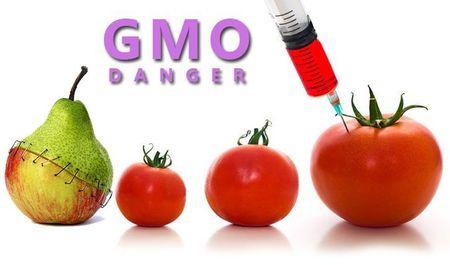 5 dieu bi mat ma 'ong trum' Monsanto khong cho ban biet - Anh 3